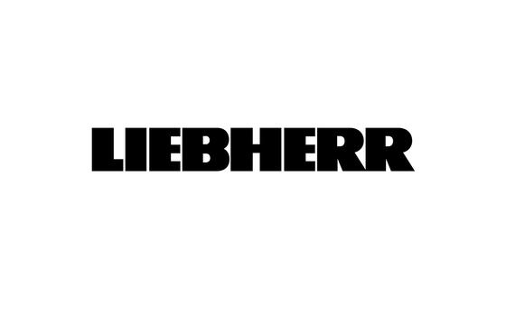 Liebherr 4097517 Track Shoe Bolt