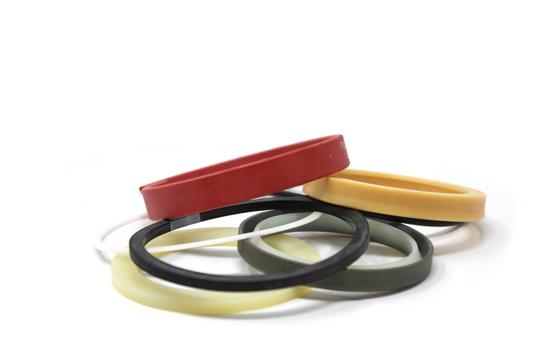 112040079C Seal Kit for Bolzoni