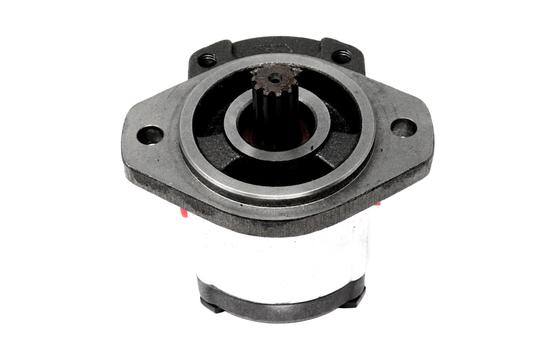 138823 Hydraulic Pump for Crown